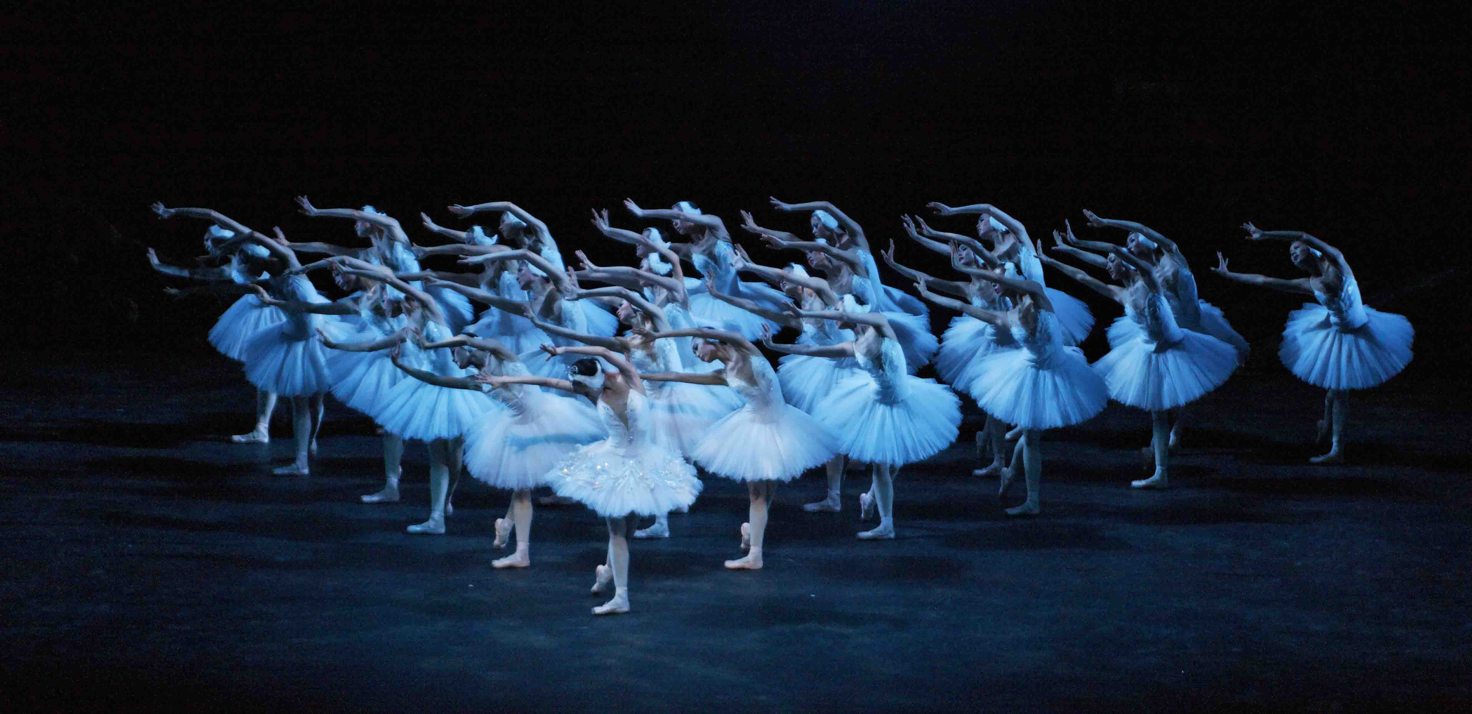 Swan Lake. Photo © The National Ballet of China